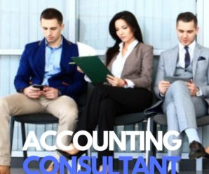 Motivation Letter for Accounting Consultant Sample